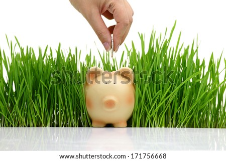 Hand deposit money in piggy bank with grass background  - stock photo