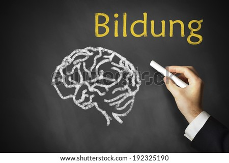 hand drawing a brain and education on a chalk board - stock photo