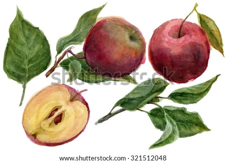 Hand drawn apples watercolor set - stock photo