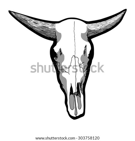 Hand-drawn cow skull isolated on white