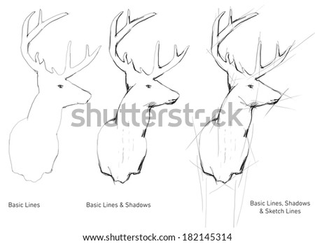 Hand Drawn deer trophy - stock photo