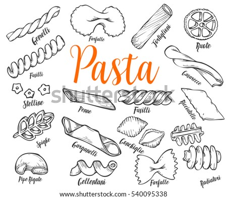 Hand drawn Italian pasta set. Collection of different types of pasta. Retro line art illustration. Gluten Food from wheat, flour.