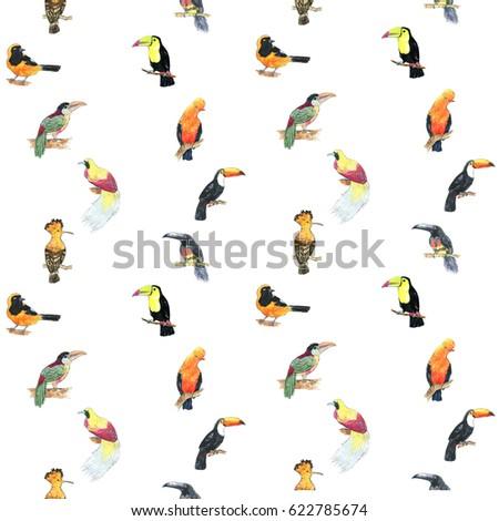 Big Set Birds Flying Animals Bird 477204472