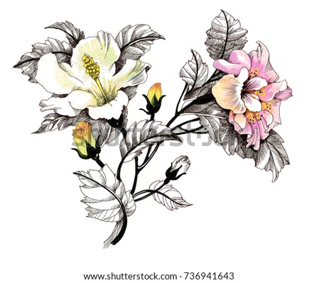 Hand drawn painting with colorful flowers on white background