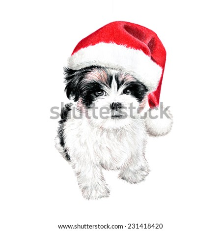 hand drawn puppy dog with santa claus hat, cute fun Christmas card clipart, sketch of dog is colored pencil drawing, holiday clip art illustration isolated on white background - stock photo
