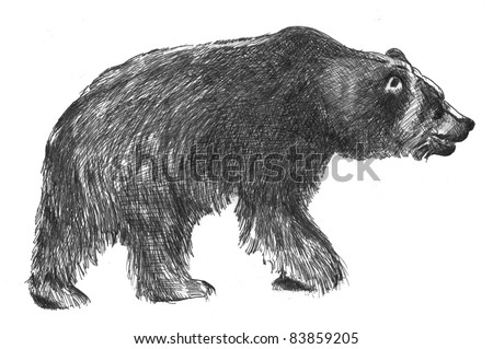 hand drawn sketch of big black grizzly bear in black ink isolated on white background, Ursus arctos horribilis - stock photo