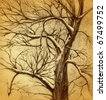 hand drawn tree on grunge background - stock photo