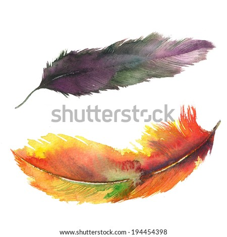 Hand drawn watercolor feather. Original watercolor painting. - stock photo