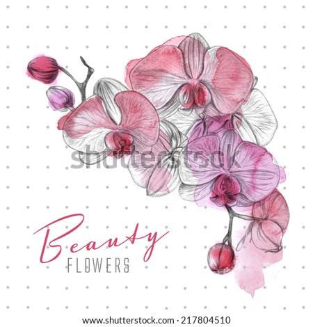 Hand drawn watercolor flower illustration.  - stock photo