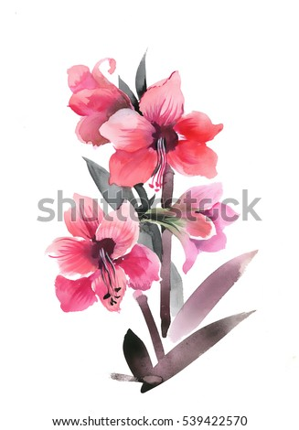 Hand drawn watercolor flowers isolated on white background