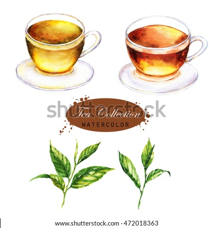 Hand-drawn watercolor illustration of the tea. Cup of the black and green tea and tea leaves isolated on the white background.