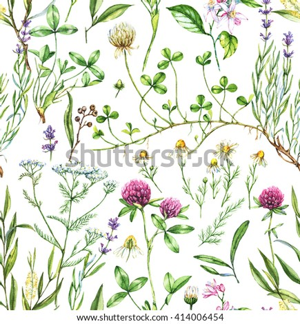 Hand-drawn watercolor seamless botanical pattern with different plants. Repeated natural background with meadow and medical plants: chamomile, trefoil, lavender, tea tree and other.  - stock photo