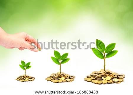 hand giving a coin to trees growing on piles of coins / csr / sustainable development / trees growing on stack of coins / saving money - stock photo