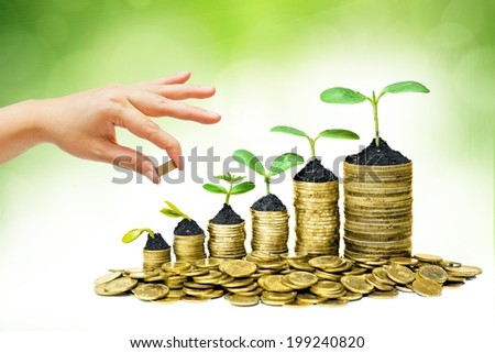 hand giving a golden coin to a tree growing on piles of golden coins - saving money - stock photo