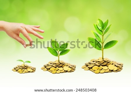 hand giving coins to trees growing on piles of golden coins with green background / business with csr practice - stock photo
