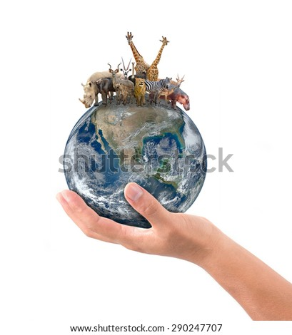 hand hold animal on the earth, Element of this image are furnished by NASA