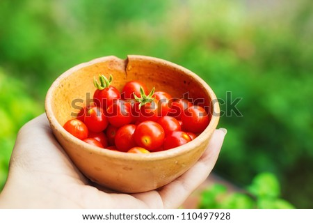 Hand holding a bowl of organic cherry tomatoes (selective focus) - stock photo
