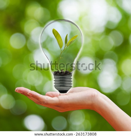 hand holding a light bulb with fresh green leaves inside, isolated on green bokeh background - stock photo