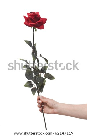 hand holding a red rose - stock photo