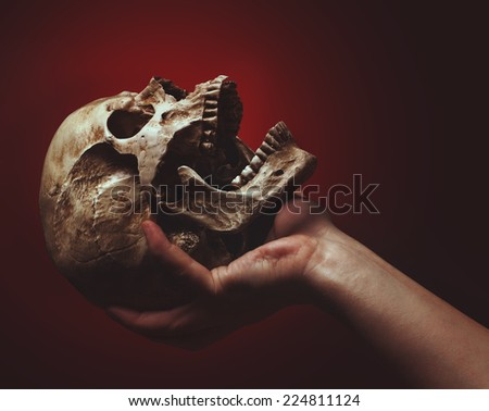 hand holding a skull on a black-red background - stock photo
