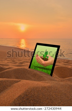 Hand holding a small plant.tablet PC in the desert.Environmental issues,Concept for growing business, ecology, freshness, freedom and other lifestyle issues.  - stock photo