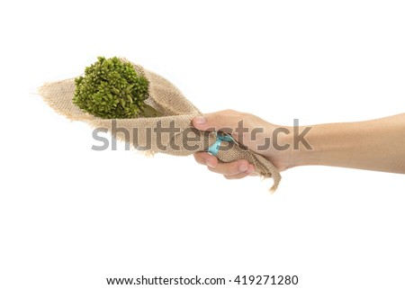 hand holding bouquet isolated on white background.