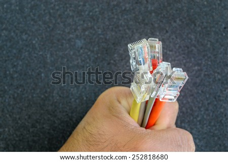 Hand holding colorful internet cables - stock photo