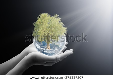 Hand holding earth and tree ,concept background , Elements of image are furnished by NASA