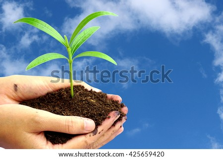 hand holding green plant in soil over nature blue sky clouds , Idea for environment ecology background