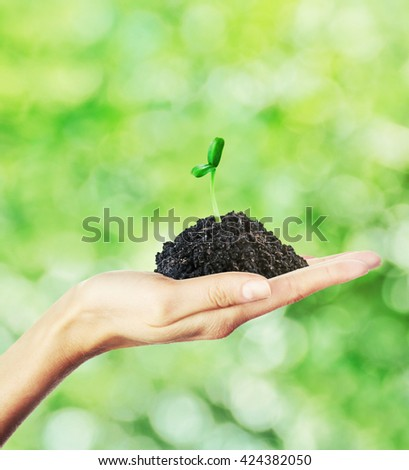 Hand holding green sprout on nature background. New life concept - stock photo