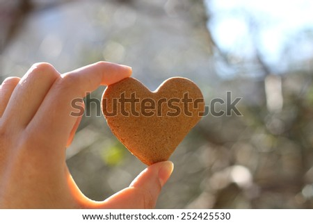 Hand holding heart-shaped gingerbread cookie.  - stock photo