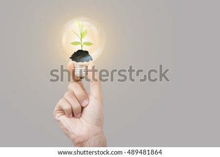 hand holding light bulb against tree on gray background. Ecological and energy concept