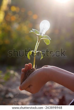 hand holding Light bulb to save the world - stock photo