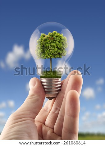 Hand holding light bulb with the green tree inside,for green energy, ecology themes - stock photo