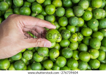 Hand holding lime at market,Thailand