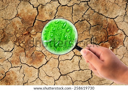 hand holding magnifying find water on dry cracked the earth - stock photo