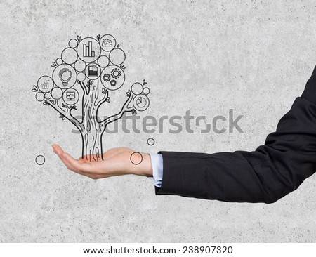 hand holding money tree on gray background - stock photo