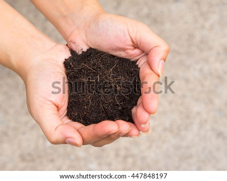 Hand holding soil  , in agricultural field