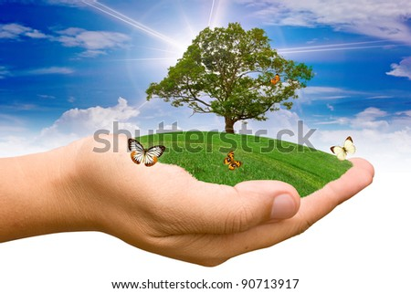 Hand holding the grass. - stock photo