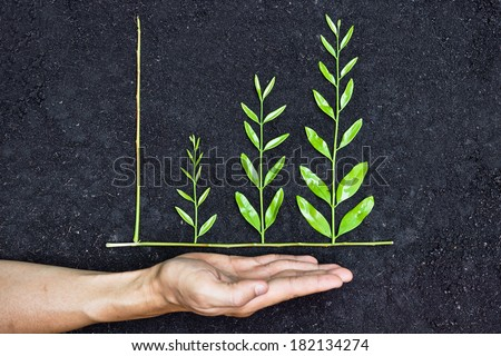 Hand holding tree arranged as a green graph on soil background / csr / sustainable development / planting a tree / corporate social responsibility - stock photo
