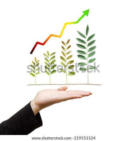 hand holding tree arranged as a green graph with arrow on isolated background / csr / sustainable development / corporate social responsibility - stock photo