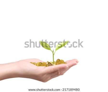 hand holding tree growing on golden coins ,saving money