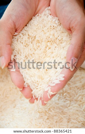 hand holding uncooked rice - stock photo