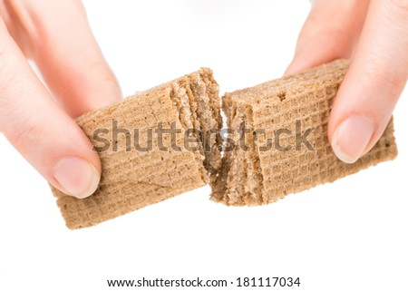 Hand holds wafer of chocolate and breaks it. Isolated on a white background. - stock photo