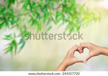 hand in heart shape with bamboo leaves with green blur background - stock photo