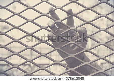 Hand in the cage with selective focus on the finger in retro style - stock photo