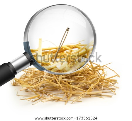 hand lens that magnifies a needle in a haystack - stock photo