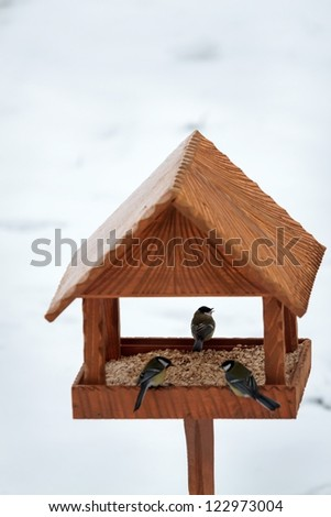 hand made animal feeder and birds - stock photo