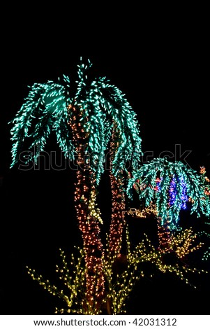 hand made palm trees made from lights during the holidays for a botanical exhibit - Palm Tree With Christmas Lights