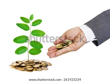 hand of a businessman giving coins to trees growing on golden coins with green background - Business growth and wealth with csr concern - stock photo